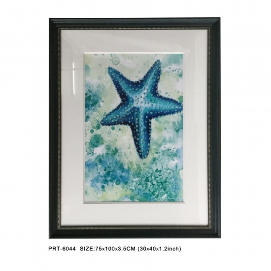 Printed Framed Art Sea Star