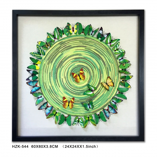 Green Sun Butterfly Shadow Box