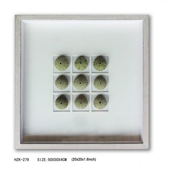 Sea Urchin 9pcs Shadow Box