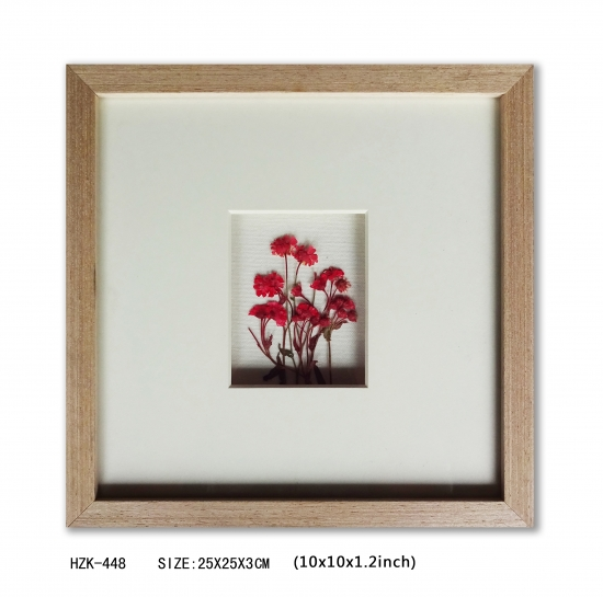 Dry flower red shadow box with wooden frame
