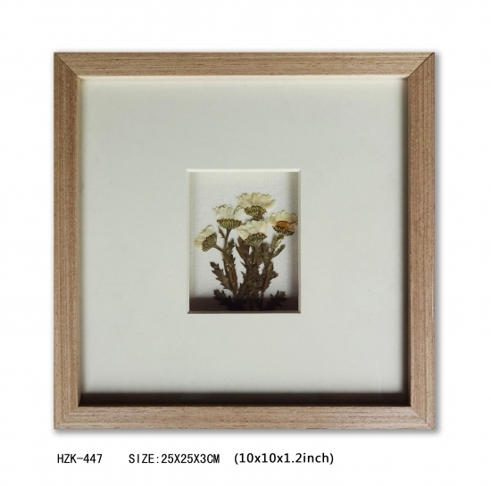 Dry Flower Shadow Box