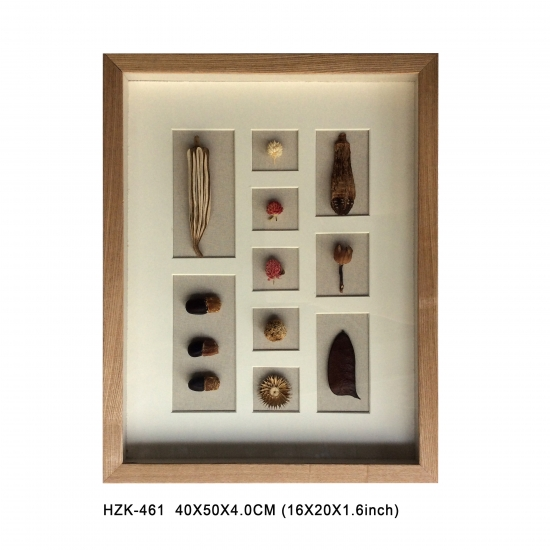 Dry Fruit Shadow Box