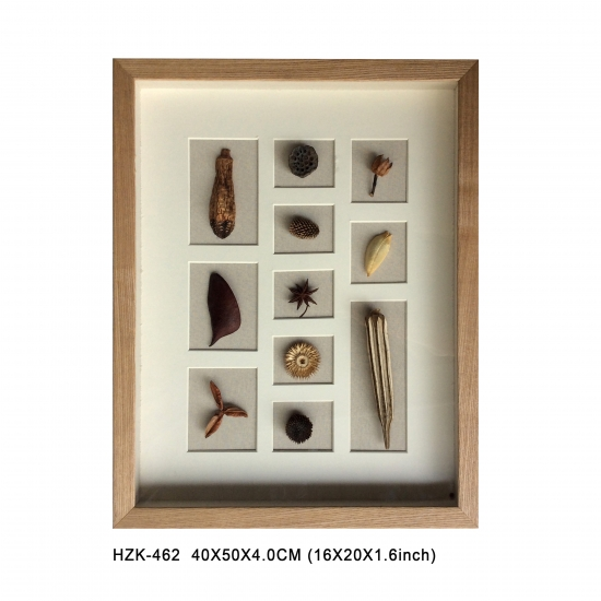 Dry Nuts Shadow Box
