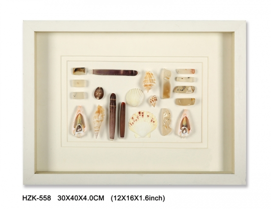 Shells Shadow Box